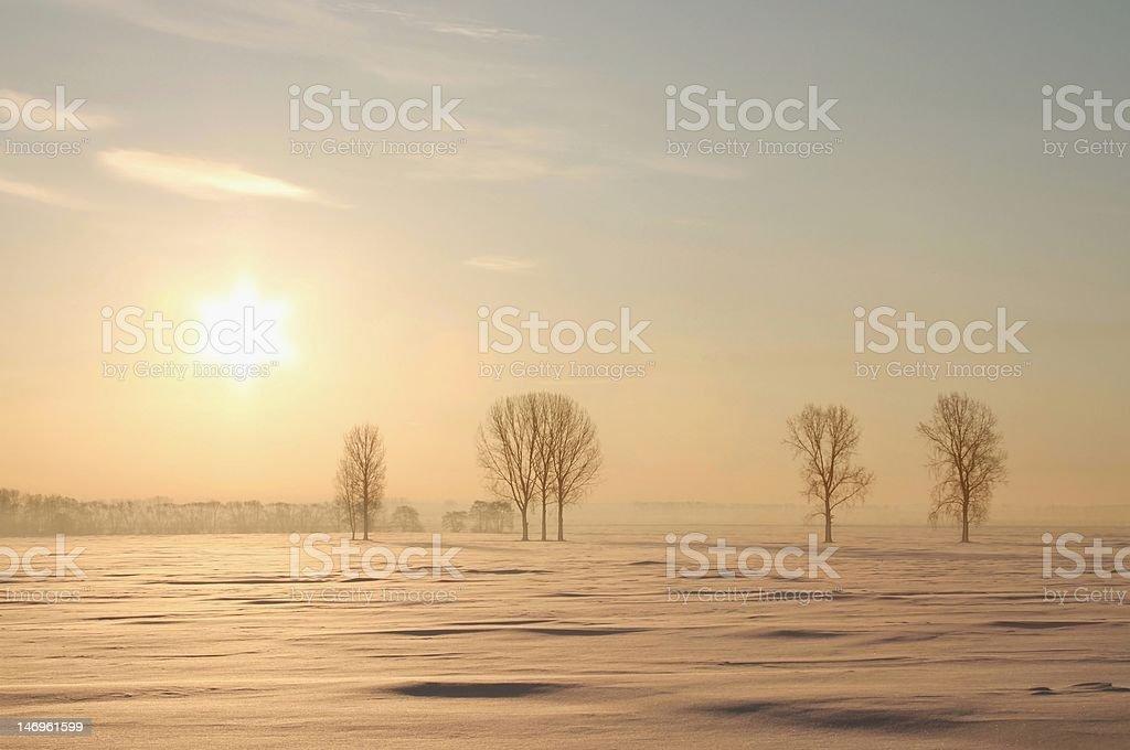 Misty winter sunrise royalty-free stock photo