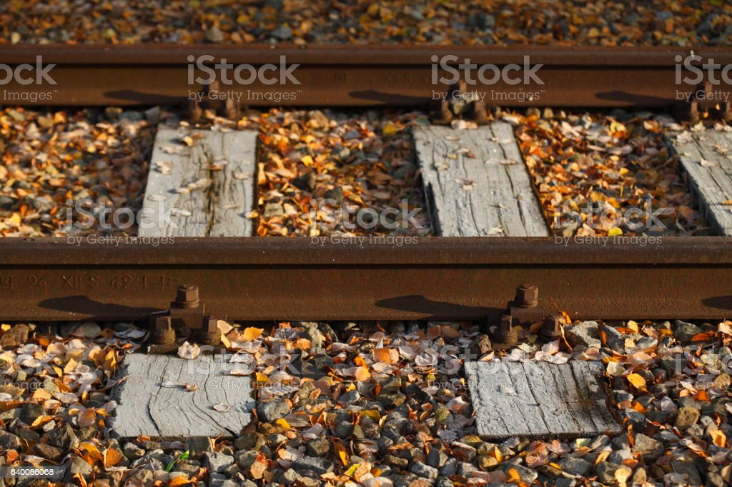 mit Raureif überzogene Eisenbahnschienen, Eisenbahnschwellen stock photo