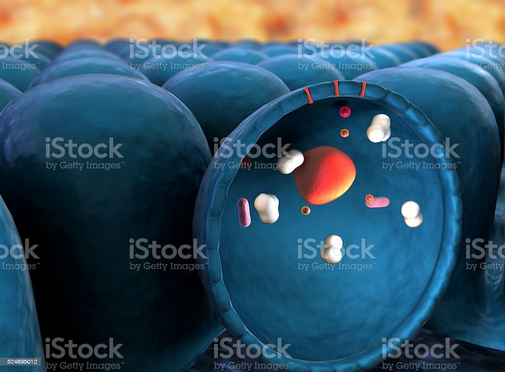 mitochondria and proteins stock photo