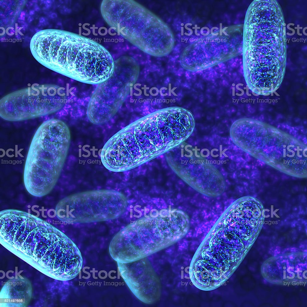 Mitochondria - microbiology stock photo