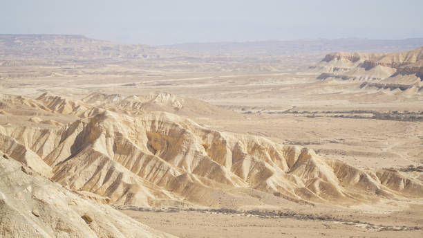 Mitzpe Ramon dry canyon landscape in the Negev desert of Israel. Mitzpe Ramon dry canyon landscape in the Negev desert of Israel. negev stock pictures, royalty-free photos & images