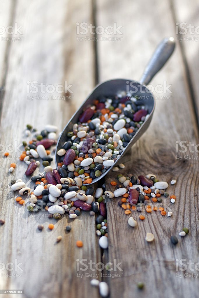 Mix of beans and lentil royalty-free stock photo