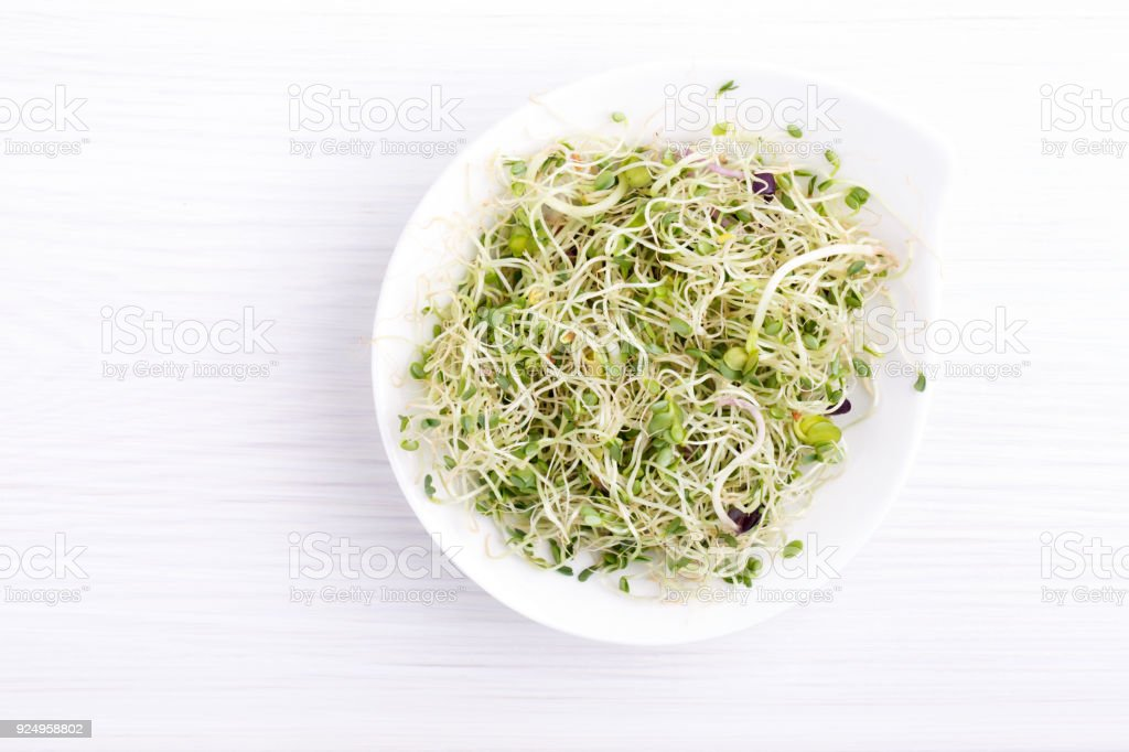 Mix of food sprouts - alfalfa, radish, clover in a bowl. Micro greens on white. Healthy eating. Top view. stock photo