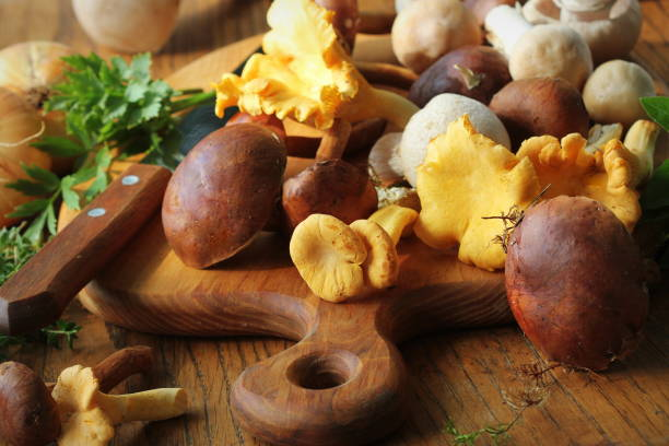 Mix of forest mushrooms on cutting board over old wooden table stock photo