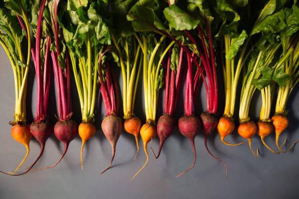 Mix of red and gold beets on grey background. Food background. Concept of healthy eating stock photo