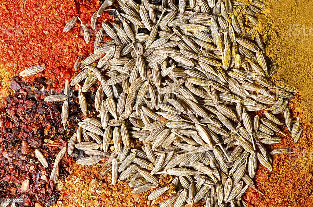 Mix of spices royalty-free stock photo