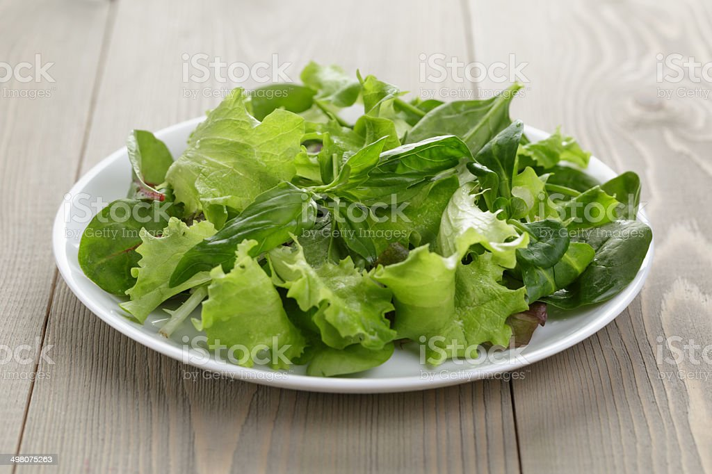 mix salad in white bowl stock photo