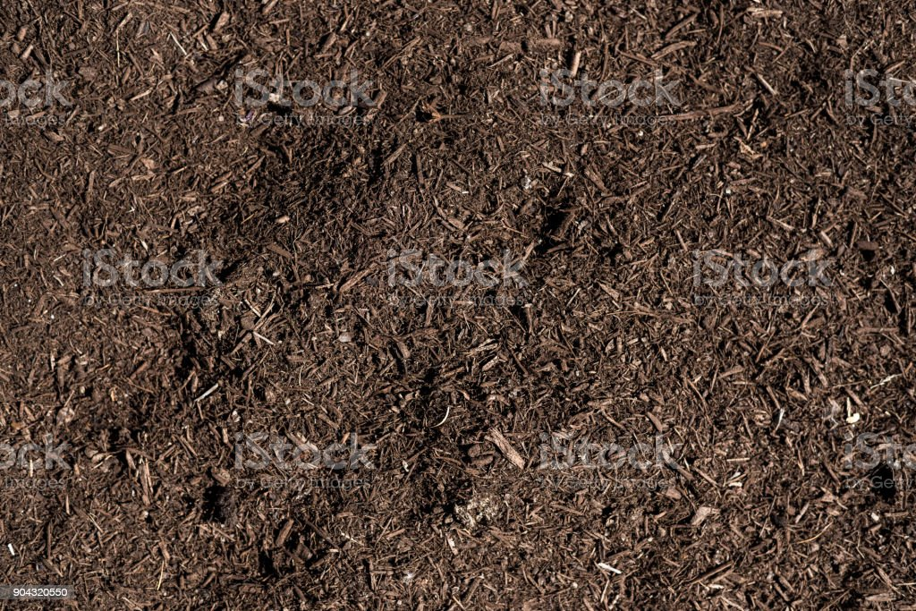 mix soil for planting stock photo