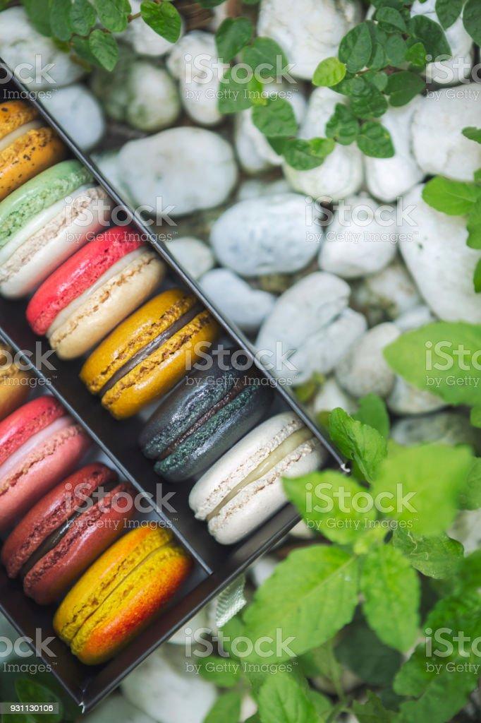 Karışık renkli Fransızca macaroons kutusunda doğa, beyaz taş ve yeşil yaprakları yerleştirin. - Royalty-free Acıbadem kurabiyesi Stok görsel