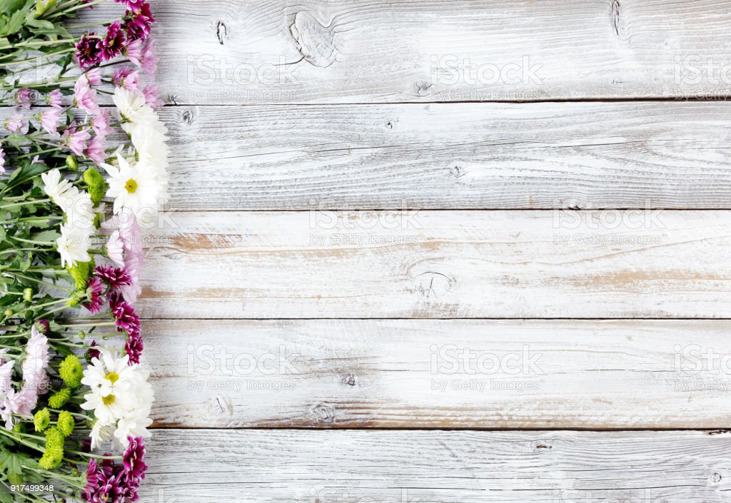 Mixed flowers forming left border on white weathered wooden boards stock photo