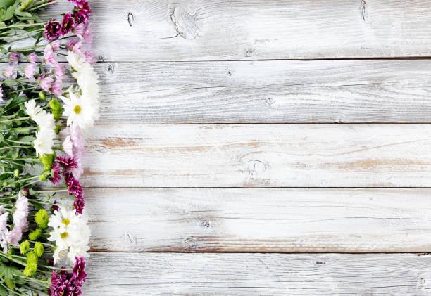 gemischte blüten bilden linke grenze auf weißen verwitterte holzbretter - holzblumen stock-fotos und bilder