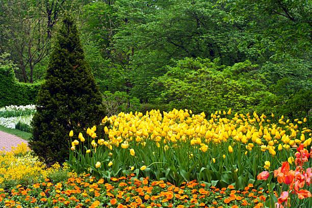 Gemischte Blumen, Longwood Gardens – Foto