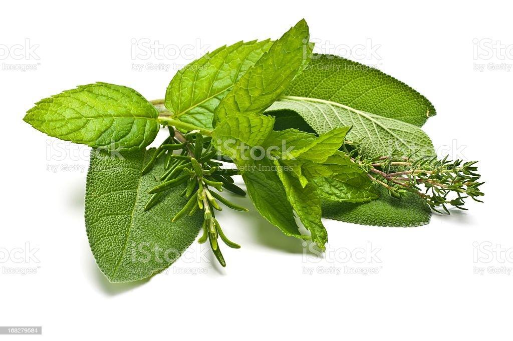 Mixed Fresh Herbs stock photo