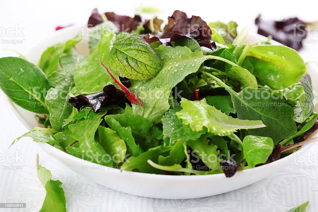 mixed fresh salad leaves stock photo