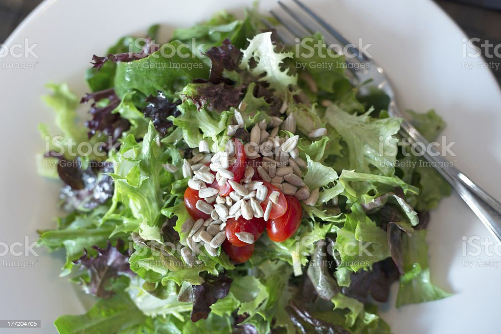 Mixed Green Salad with Cherry Tomatoes and Sunflower Seeds royalty-free stock photo
