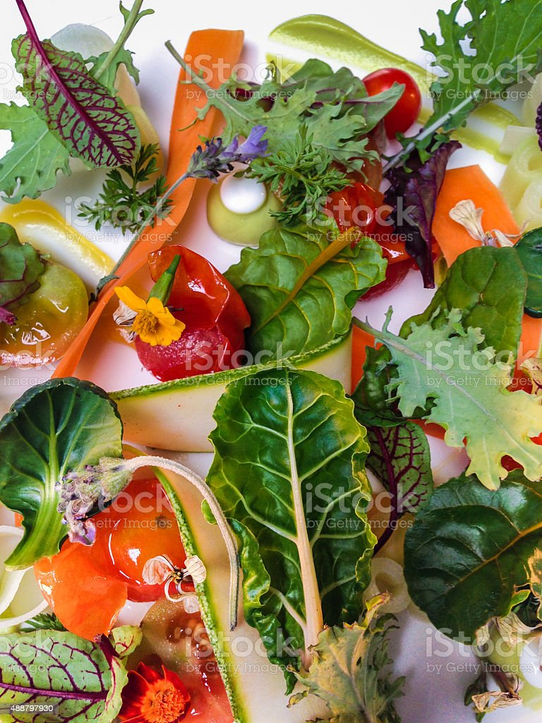 Mixed Greens stock photo