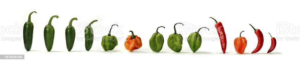 Mixed Hot Chillies 2 stock photo