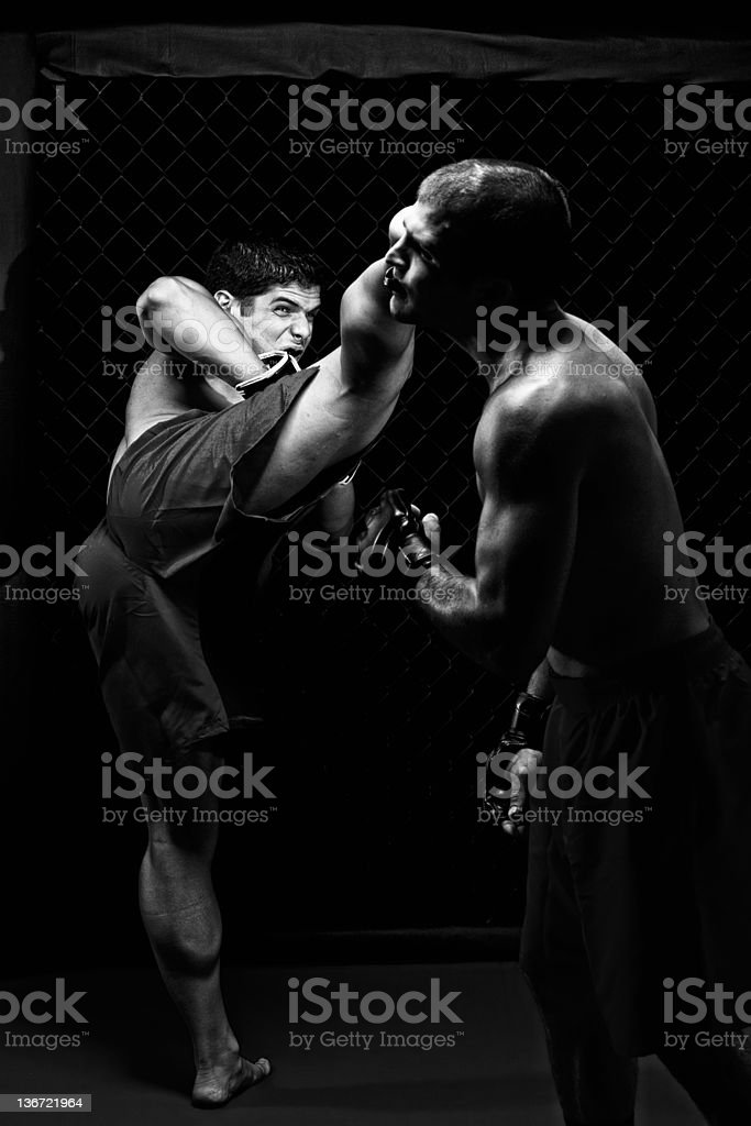 Mixed martial artists fighting - kicking royalty-free stock photo