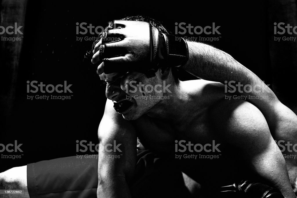 Mixed martial artists - ground fighting royalty-free stock photo