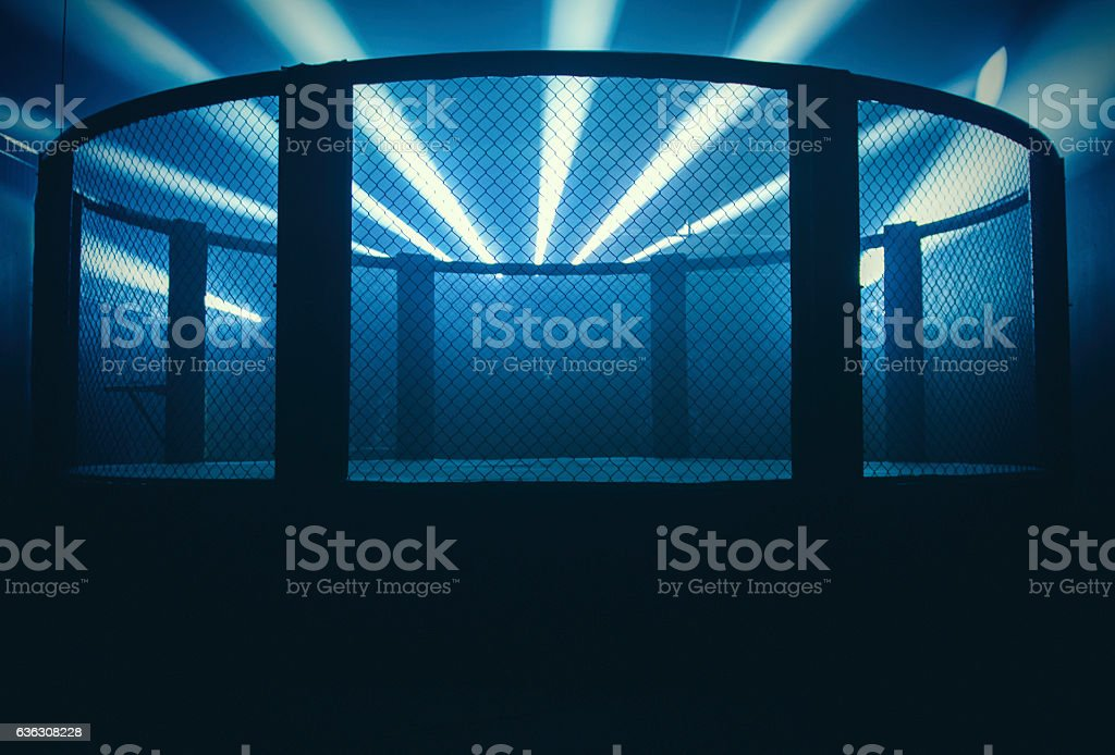 Mixed Martial Arts Arena stock photo