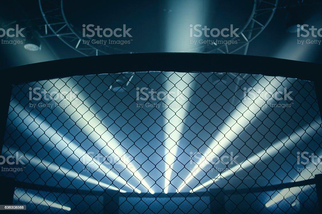 Mixed Martial Arts Arena stock photo