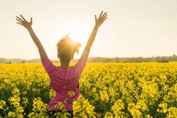 Mixed race African American girl female young woman athlete runner teenager in golden sunset or sunrise arms raised celebrating in field of yellow flowers stock photo