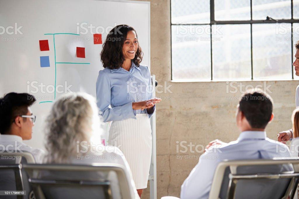 Mixed race businesswoman giving a presentation at a meeting Mixed race businesswoman giving a presentation at a meeting 30-39 Years Stock Photo