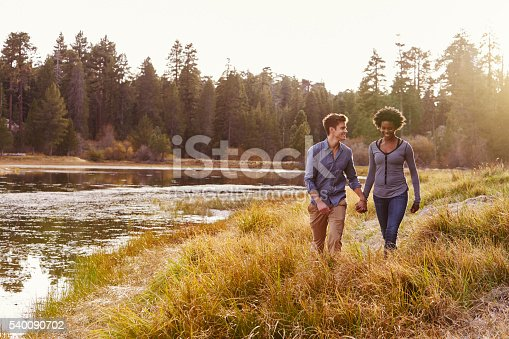 istock Mixed race couple holding hands, walking near a rural lake 540090702