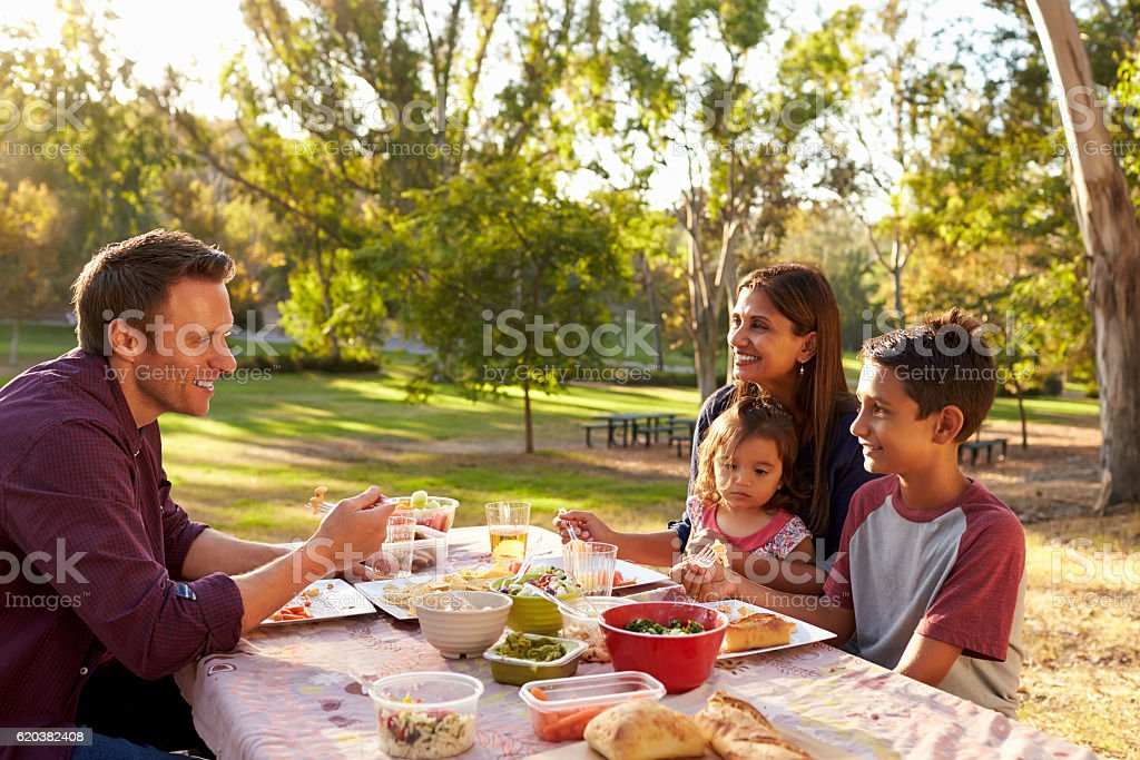 Mixed race family enjoying a picnic at a table in a park stock photo