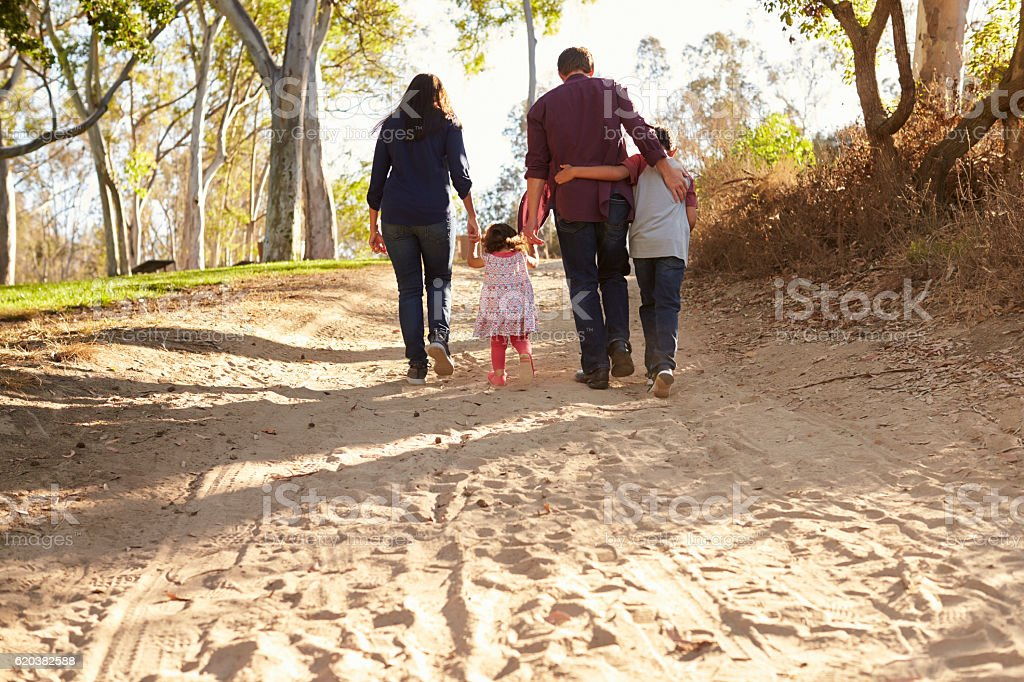 Mixed race family walking on rural path, back view stock photo