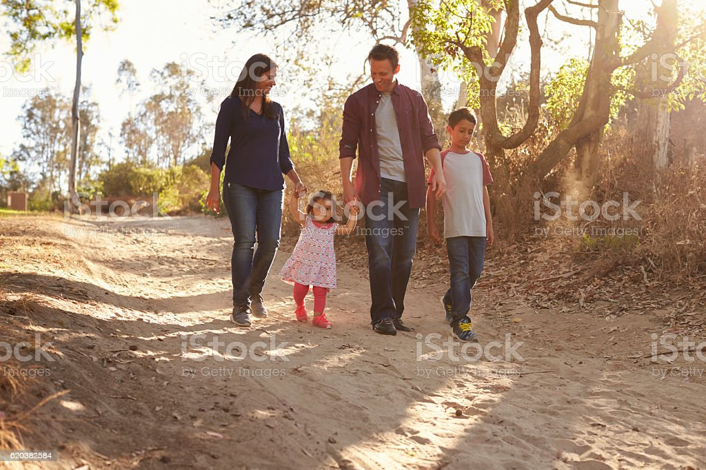 Mixed race family walking on rural path, front view stock photo