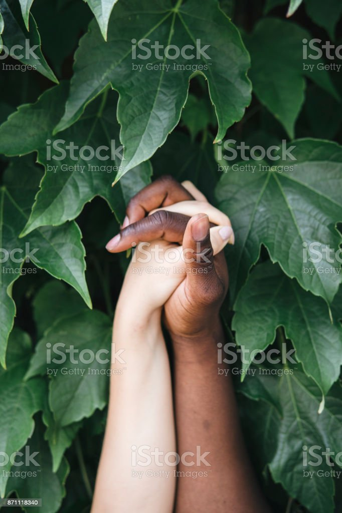 mixed race hands holding each other in nature - foto stock