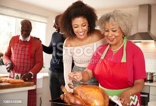 istock Mixed race senior and young adult family members talking in the kitchen while preparing Christmas dinner together, close up 1065443396