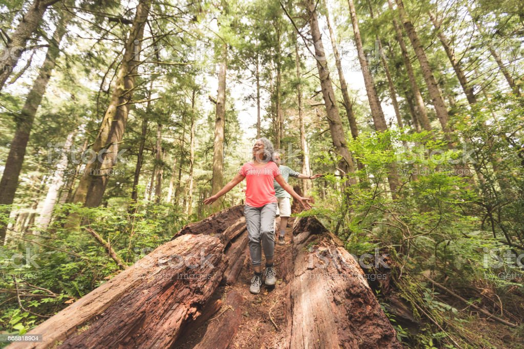 Mixed race senior couple take the road less traveled while hiking in the forest stock photo