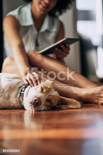 istock Mixed race woman petting dog. 944530554