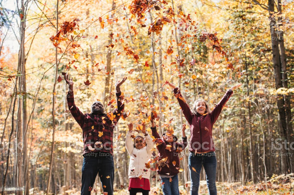 Mixed raced family in a forest, throwing maple leaves - Foto stock royalty-free di Autunno