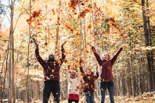 mixed raced family in a forest, throwing maple leaves - autumn stock pictures, royalty-free photos & images