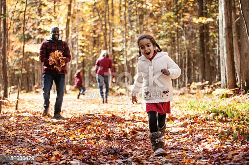 Mixed race family in a forest, throwing maple leaf, during autumn, Quebec, Canada