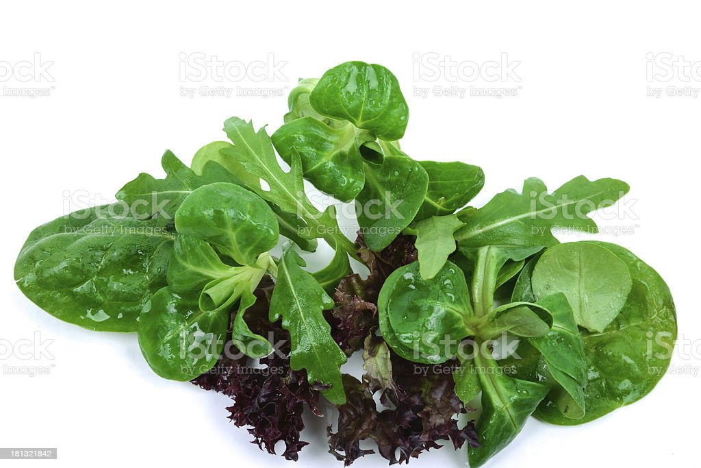 mixed salad on a white background royalty-free stock photo