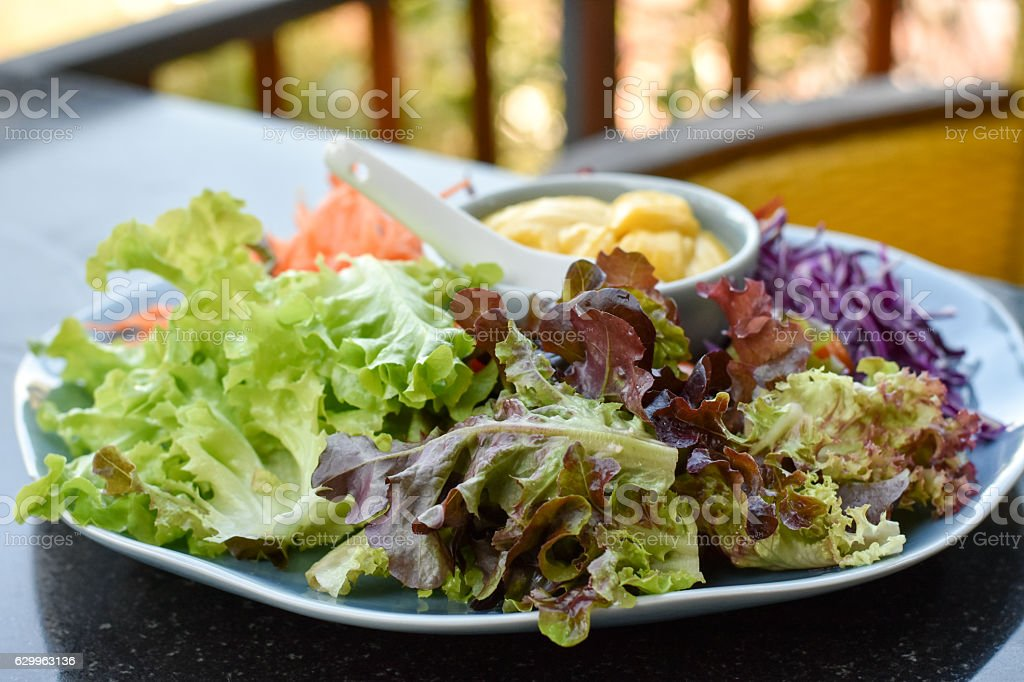 Mixed vegetable salad with salad cream stock photo