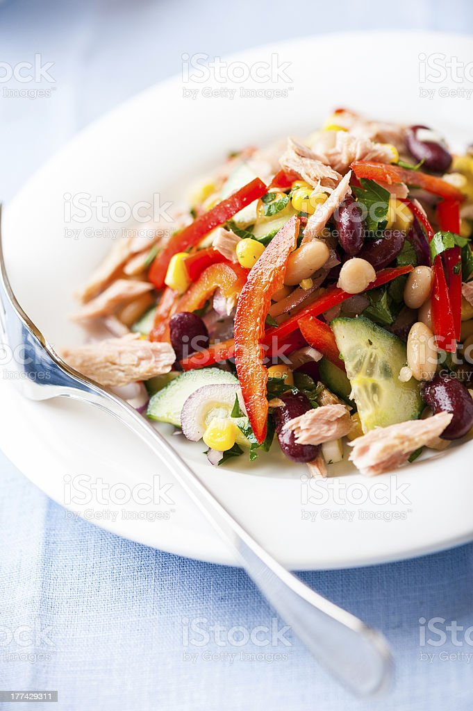 Mixed vegetable salad with tuna royalty-free stock photo
