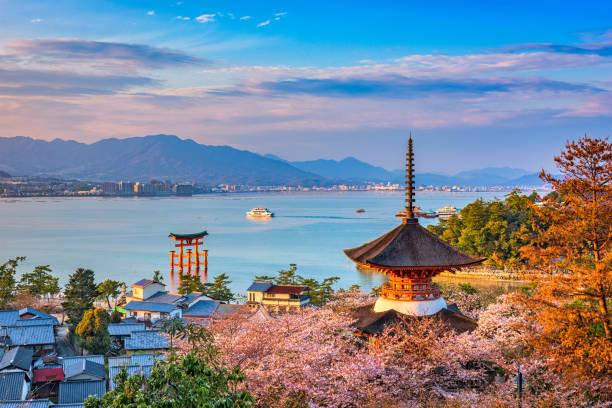 miyajima, hiroşima, japonya - hiroshima stok fotoğraflar ve resimler