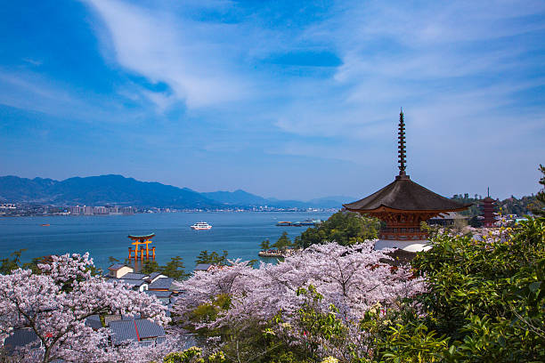 Miyajima in the spring when a cherry tree blooms Hatsukaichi, Hiroshima Prefecture, Japan - April 1, 2014: It is spring scenery of Miyajima with Itsukushima Shrine is a UNESCO World Heritage Site itsukushima shrine stock pictures, royalty-free photos & images