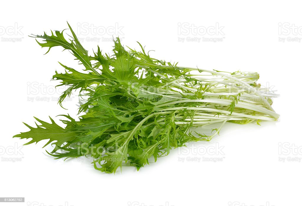 Mizuna, Japanese water vegetable or potherb mustard on white bac stock photo