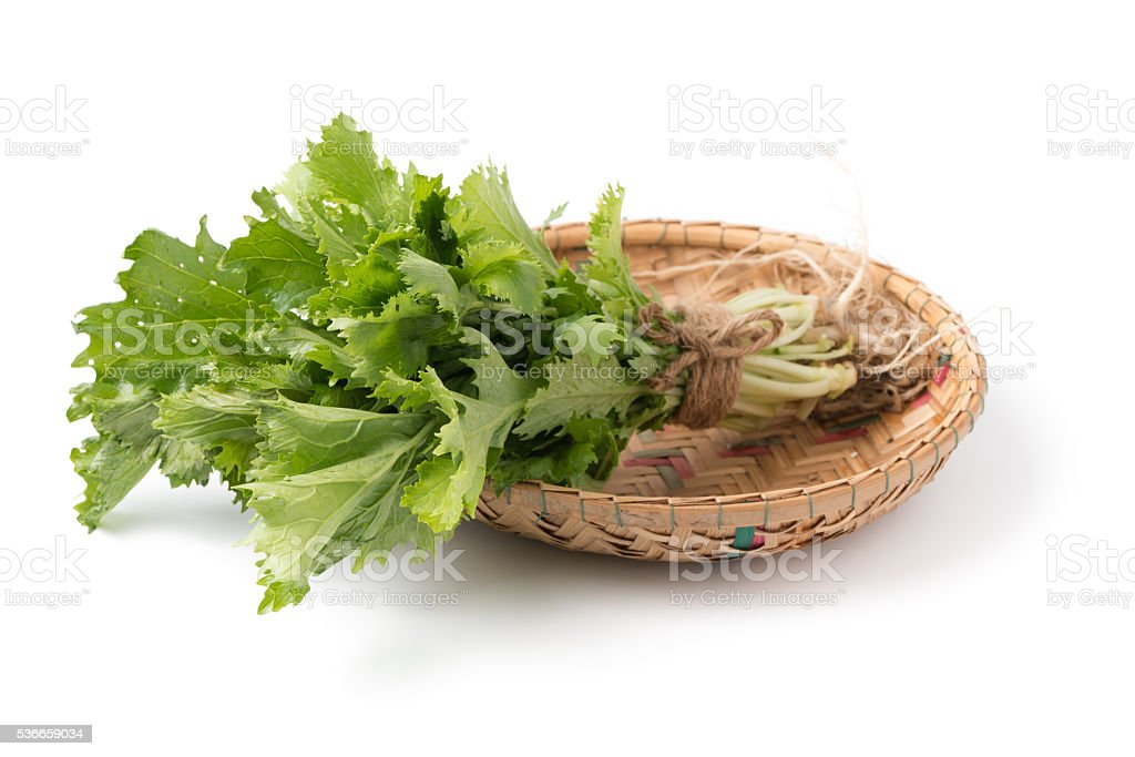 mizuna vegetation in basket isolated stock photo