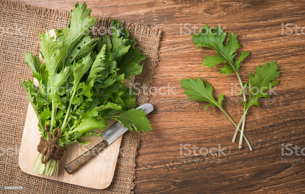 mizuna vegetation on wood plate stock photo