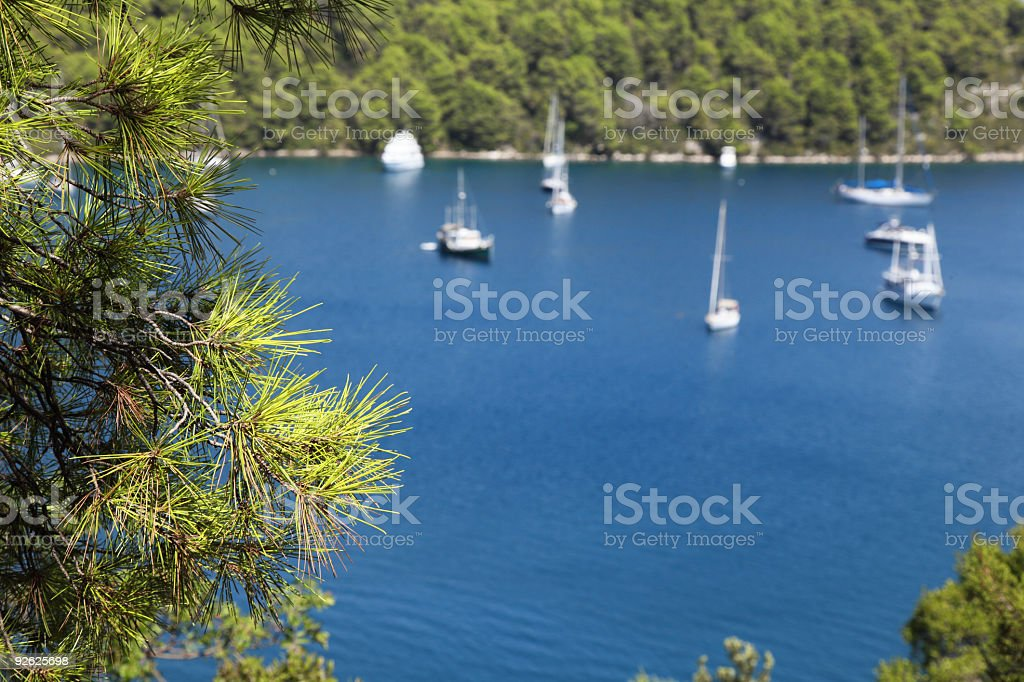 Mljet panorama details royalty-free stock photo