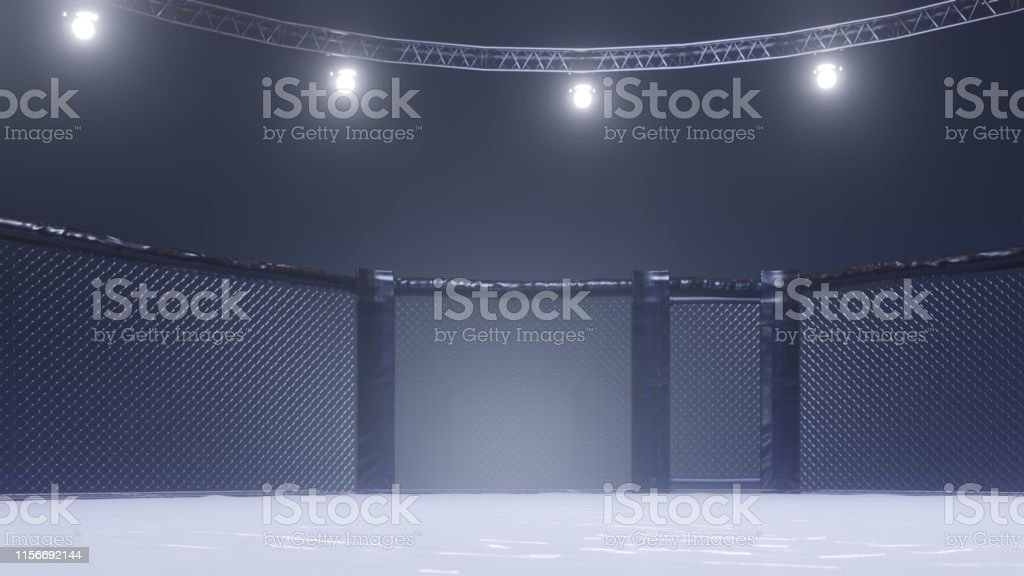 Foto De Vista Lateral Da Arena De Mma Gaiola Vazia Da Luta Luzes