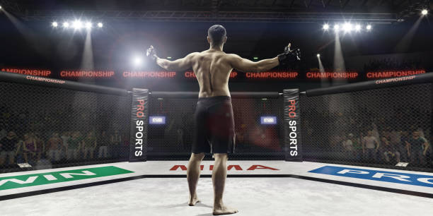 mma fighter in arena greeting the spectators, rear view stock photo