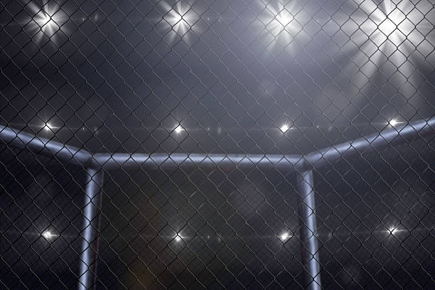 mma fighting stage side view under lights stock photo